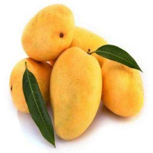 badami-mango-500x500