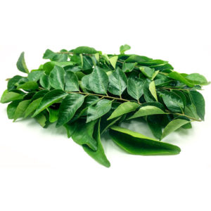 curry-leaves-1-600x600