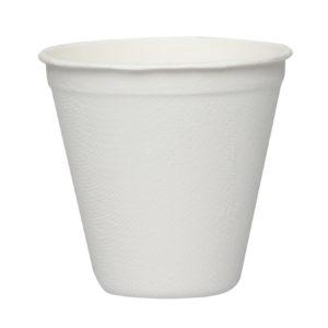 Premium-250-ml-cup-1